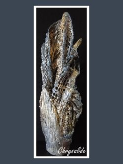Chrysalide - Dentelle de Béton par Nénuph'Arts - Gironde - Art - Boutique - Sculpture