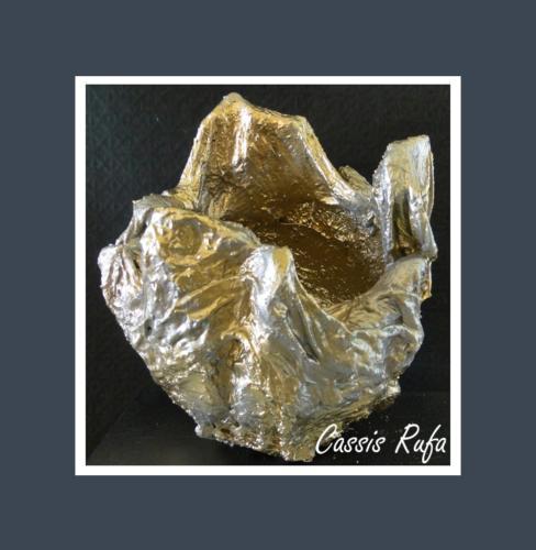 Cassis Rufa - Dentelle de Béton par Nénuph'Arts - Gironde - Art - Boutique - Sculpture